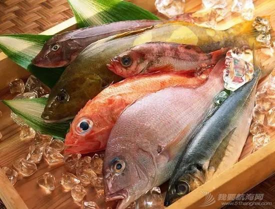 公益 | 再不加以重视,30年后我们或无鱼可吃 66d0a9921222470edd08e19ff7b92611.jpg