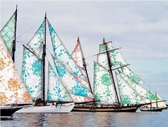 中国海洋,奥帆中心,大自然,夏令营,能动性 帆船航海特色夏令营 - 蓝色密码物语,揭开大自然的神秘面纱 a79f5d6525495e699069351ffa6897e8.jpg