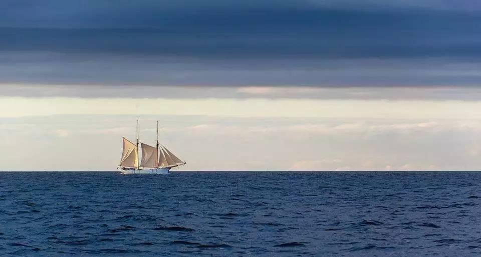"""海贼王,欧洲10国游,中国女孩,康斯坦丁,奥德赛 她是唯一一个过上""""海贼王""""生活的中国女孩,乘着95岁的木船,喝最烈的酒... 36e947a4e969a33881ea962da4019eaa.jpg"""