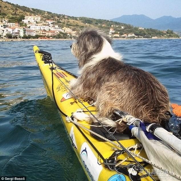 他原想一个人环游地中海...万万没想到,居然被一只汪黏上了 865433fa6f149549919ed35555223500.jpg