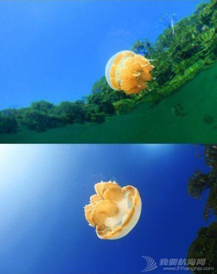 印尼,潜水,圣地,礼物,装备 印尼7大最佳潜水圣地