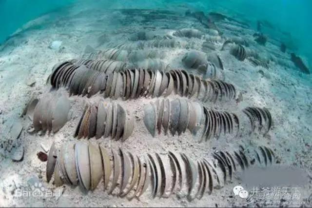 西沙群岛,中国梦,潜水员 潜水员的中国梦——西沙群岛,潜水全攻略 20160620_100623_011.jpg