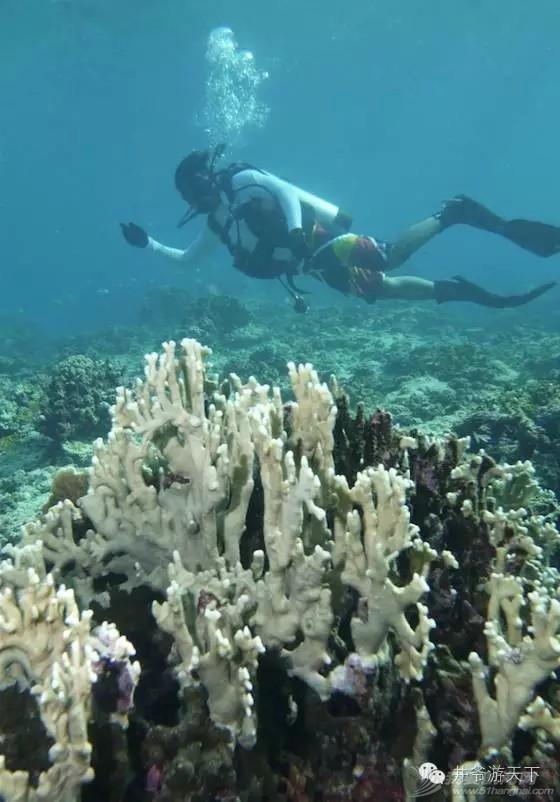 西沙群岛,中国梦,潜水员 潜水员的中国梦——西沙群岛,潜水全攻略 20160620_100623_021.jpg