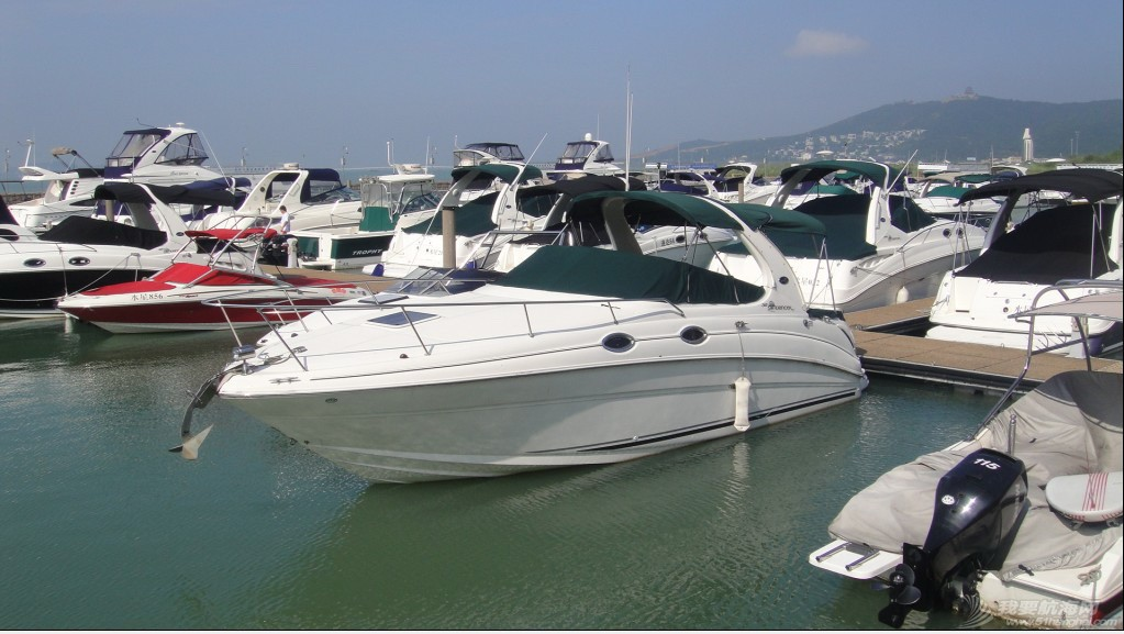 二手 二手游艇转让--Sea Ray 315 999999999999999999999999.jpg