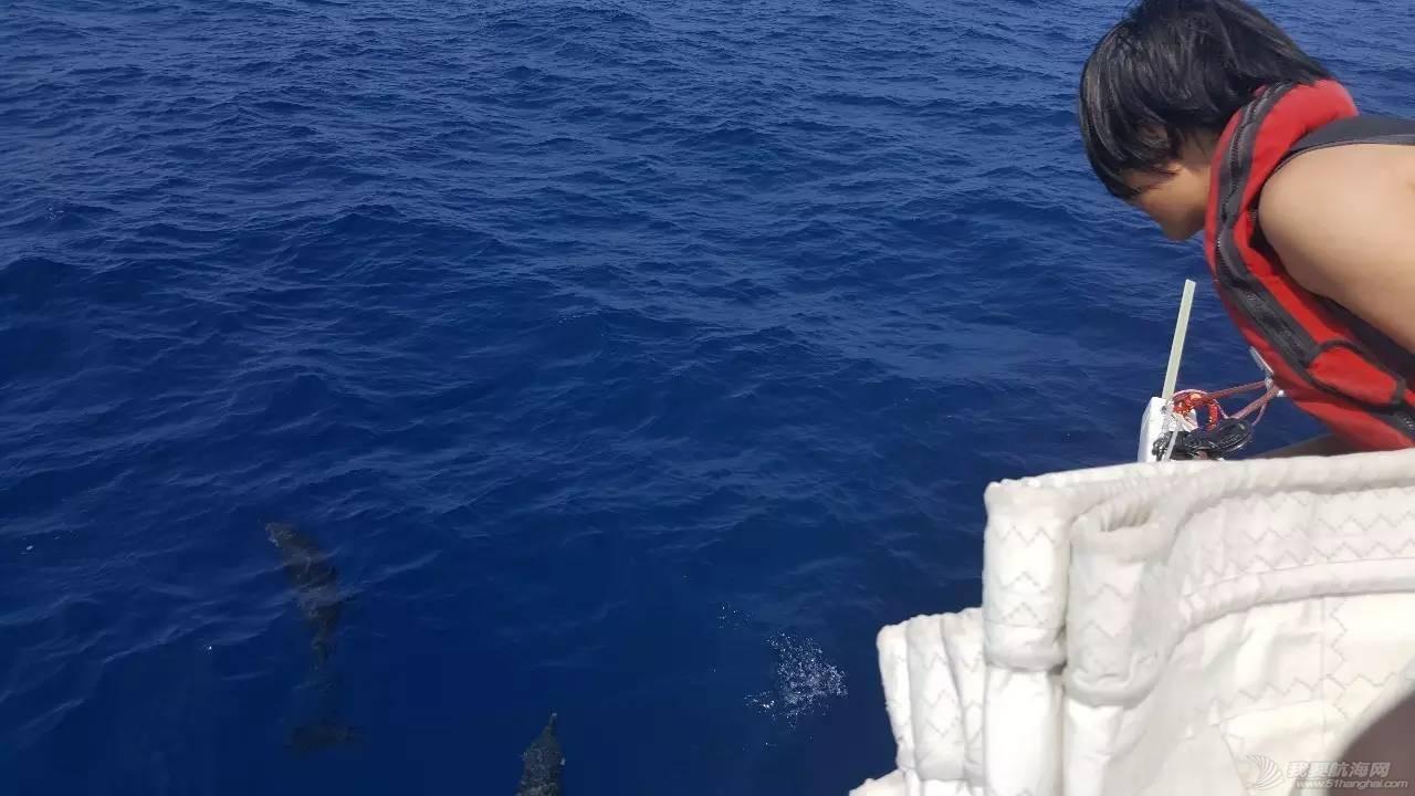 22岁她才见到海,27岁她在海上看世界 9e1166e0b8f400a0ec50d2746fd4b769.jpg