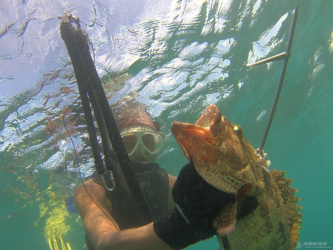 论自由潜水在航海中的实用性 87f6ab59bab2b8cb55bde53242a3ba60.jpg