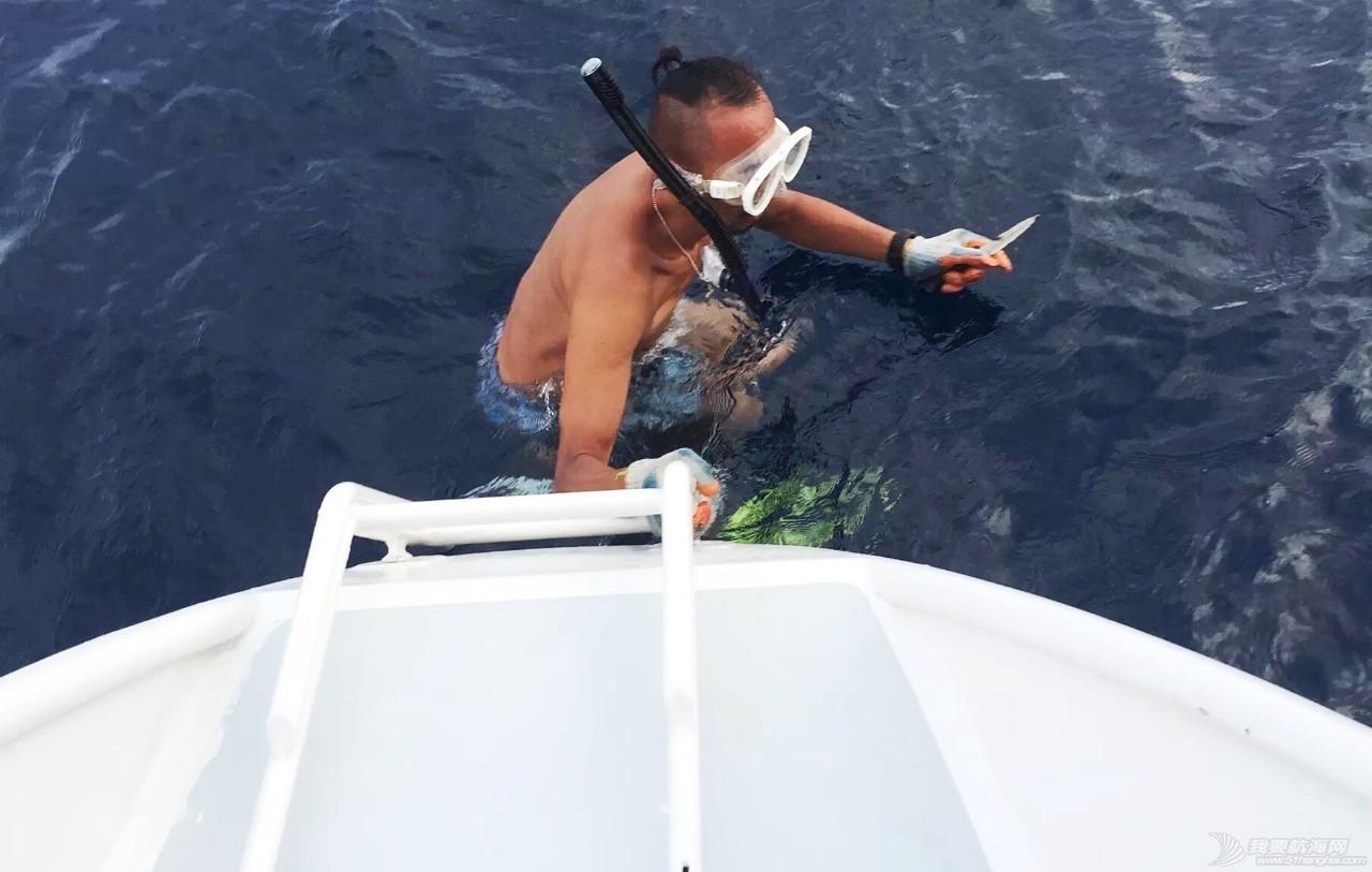 论自由潜水在航海中的实用性 8906f9dae7555cb59eccf998888536e6.jpg