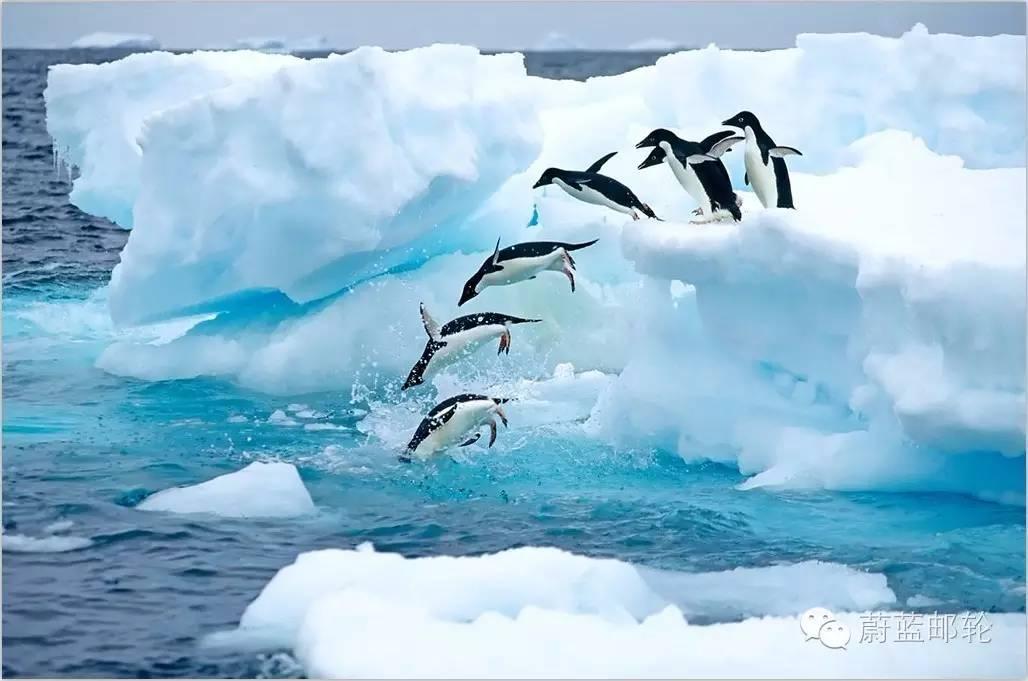 2016年11月3日启程,26天巡游南极三岛,遇见王企鹅 689d138fbaec547299e5ba143fd7481a.jpg