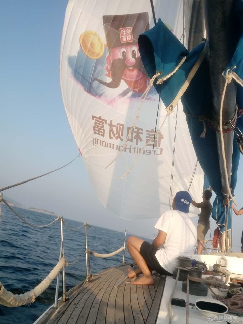 东海,退役运动员,常春藤,渤海,浙江 9天9夜航程800海里让你从一无所知变成合格的水手[威海] 104842190713901823.jpg