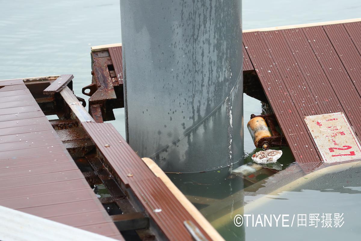 厦门 帆折人不折  厦门俱乐部杯帆船赛如期开赛--田野摄影 AG3I1638副本.JPG
