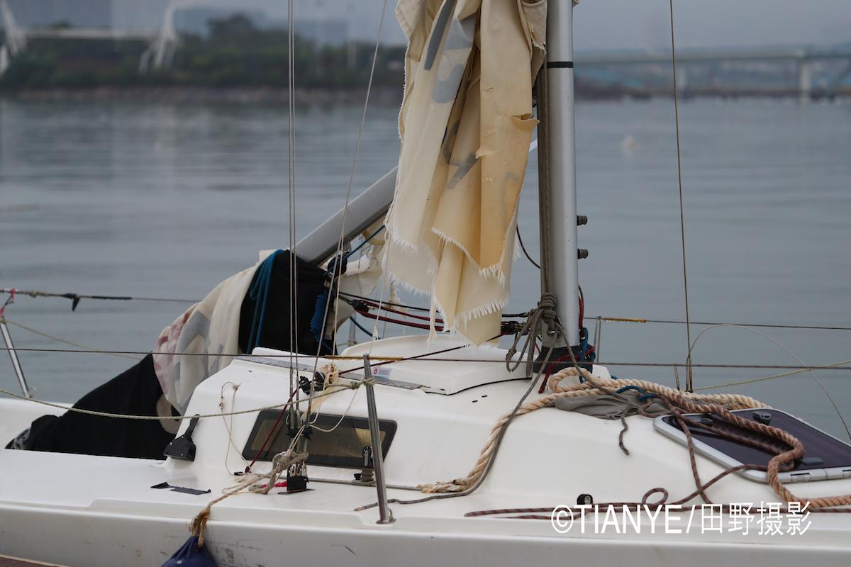 厦门 帆折人不折  厦门俱乐部杯帆船赛如期开赛--田野摄影 AG3I1639副本.JPG