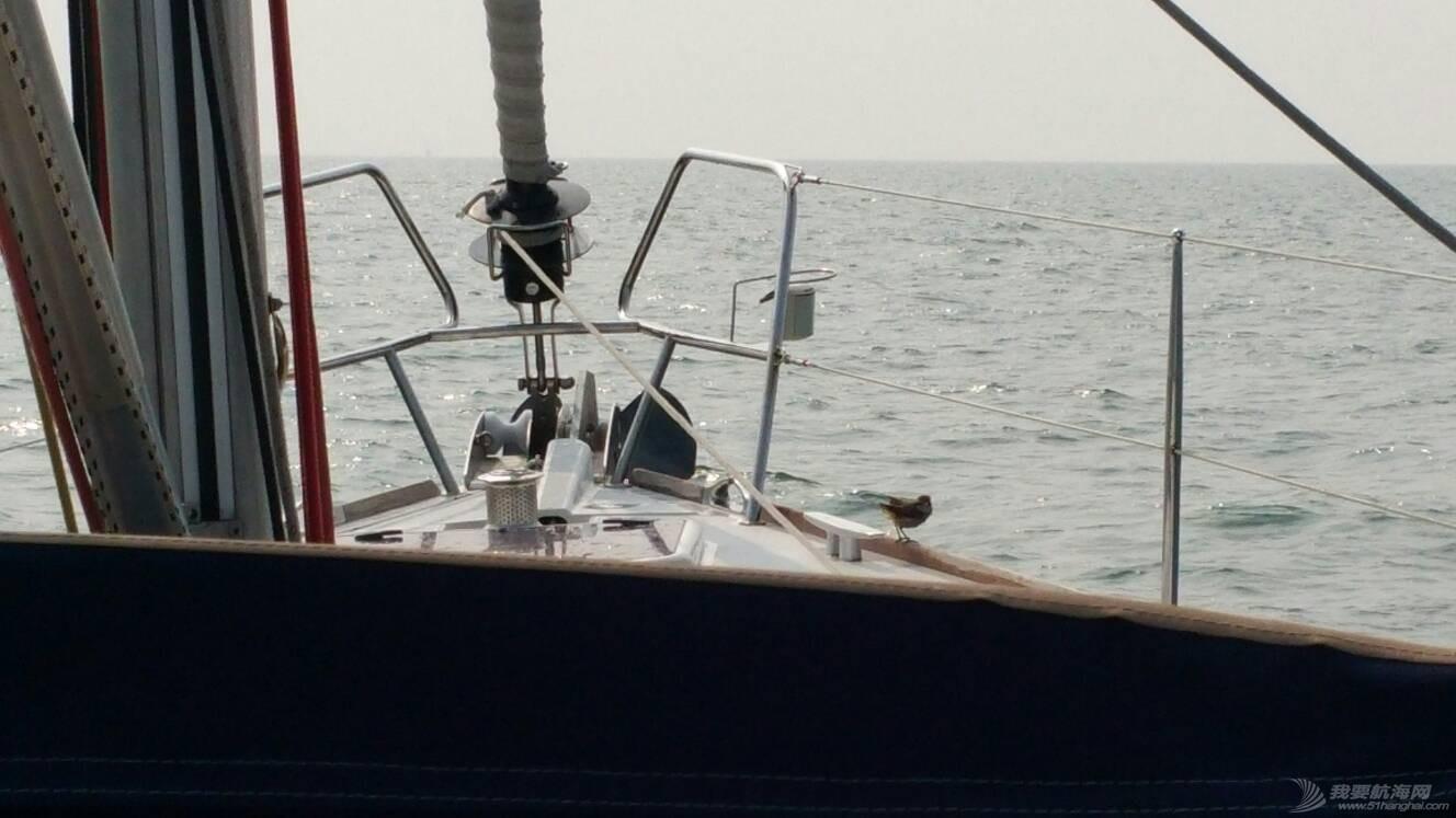 长航-首次长航经历了55小时,380海里的考验 131031ozbk3kesu2x2sbbs.jpg