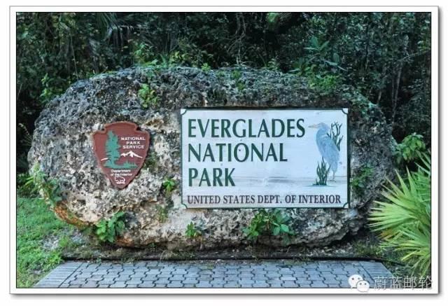 迈阿密邮轮旅游的周边地区的景点二:大沼泽地公园 cf283360bc47a6ab8c7f08ff68e4be77.jpg