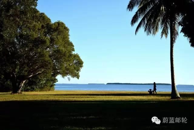 迈阿密邮轮旅游的周边地区的景点二:大沼泽地公园 725dd64a51a0819fe3796b24d2002fe0.jpg