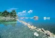 巴拿马运河巡游12天11晚明珠号11月17日迈阿密出发 019a996ea9480f3ebcc5718245556e32.jpg