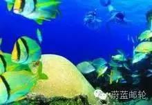 巴拿马运河巡游12天11晚明珠号11月17日迈阿密出发 cb651313fdd1465740abf628f3781b0a.jpg