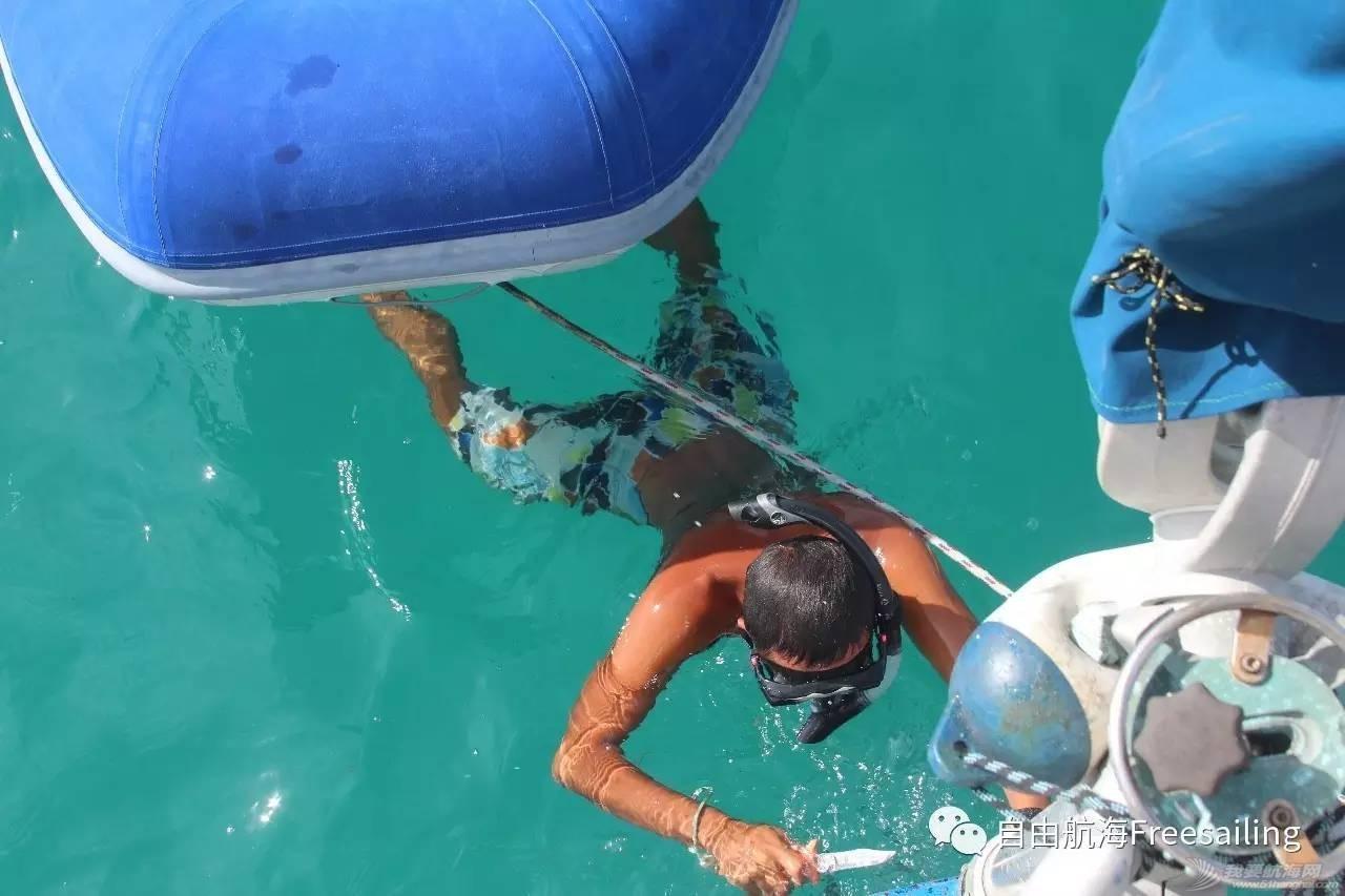 海上生活初体验——帆船环球周记六 d4edf0e67ddeb253d3317988f18510e8.jpg