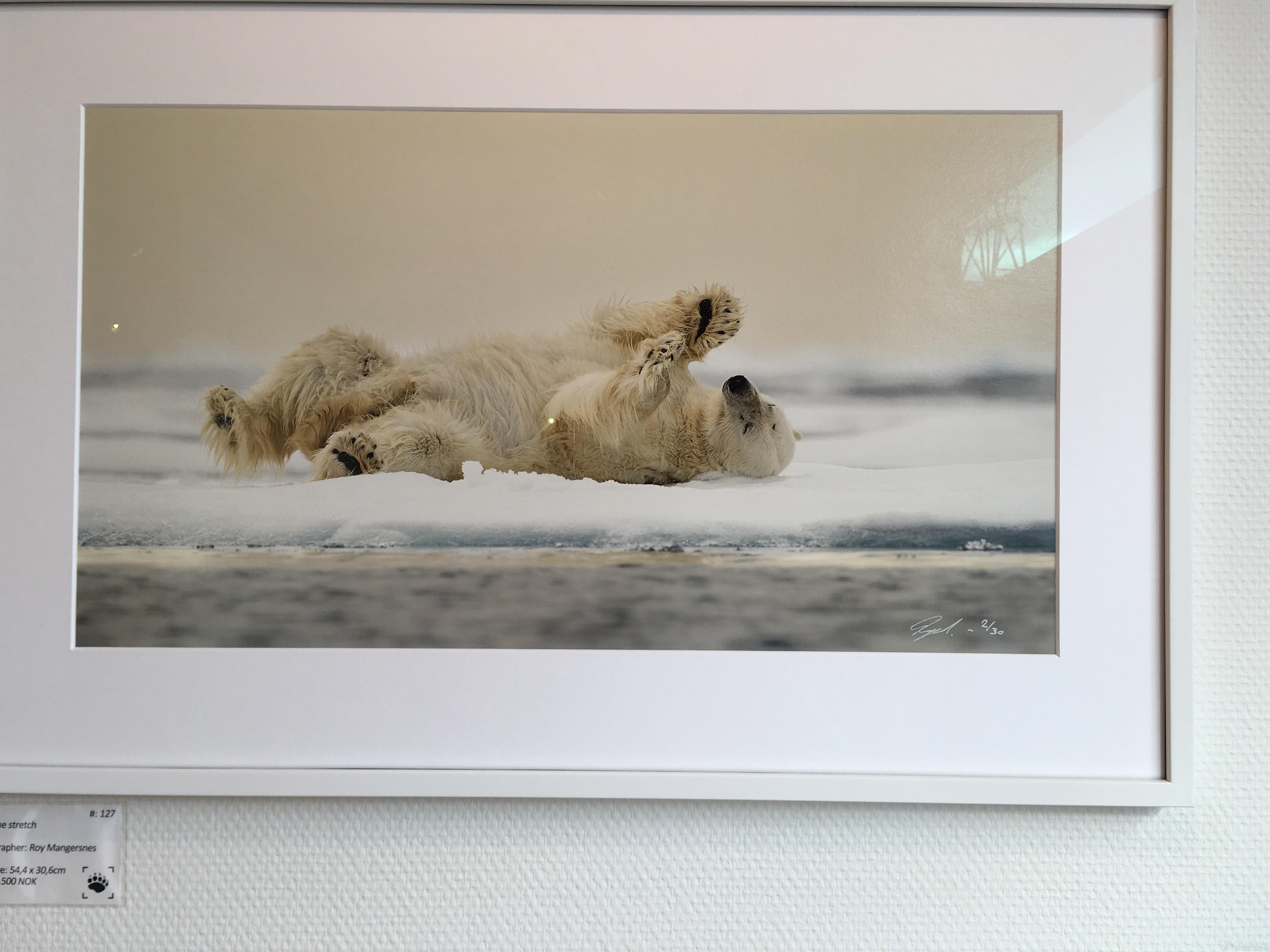 比基尼,北极圈,卫生纸,男男女女,wifi 帆洲北极-五 北极圈内的离岸航行 IMG_7820.JPG